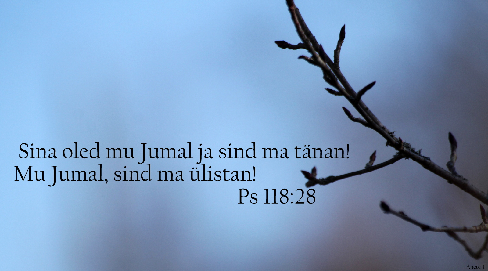 Piibel: Psalm 118:28